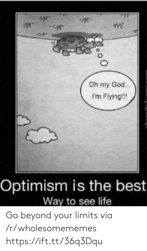 God, Life, and Oh My God: Oh my God.  I'm Flying!!!  Optimism is the best  Way to see life Go beyond your limits via /r/wholesomememes https://ift.tt/36q3Dqu