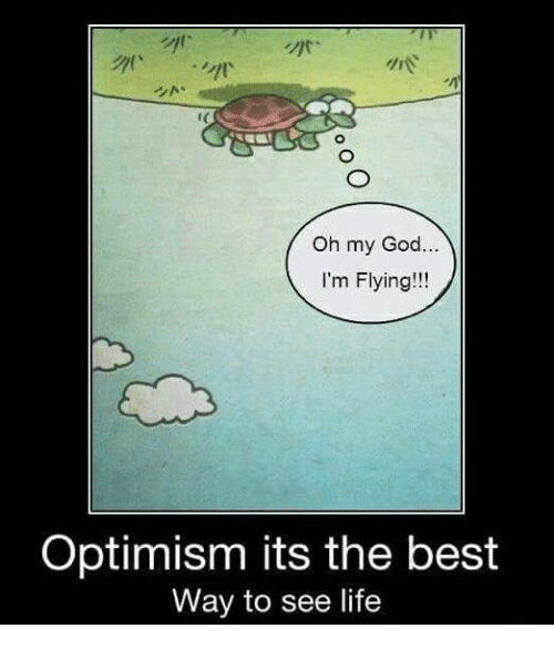 optimal: Oh my God  I'm Flying!  Optimism its the best  Way to see life