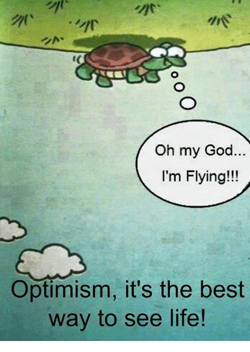 im flying: Oh my God.  I'm Flying!!!  Optimism, it's the best  way to see life!