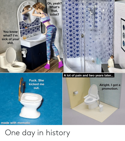 Reddit, Shit, and Yeah: Oh, yeah?  What's  that,  toilet?  You know  what? I'm  sick of your  shit.  A lot of pain and two years later...  Fuck. She  kicked me  Alright. I got a  promotion.  out.  made with mematic One day in history
