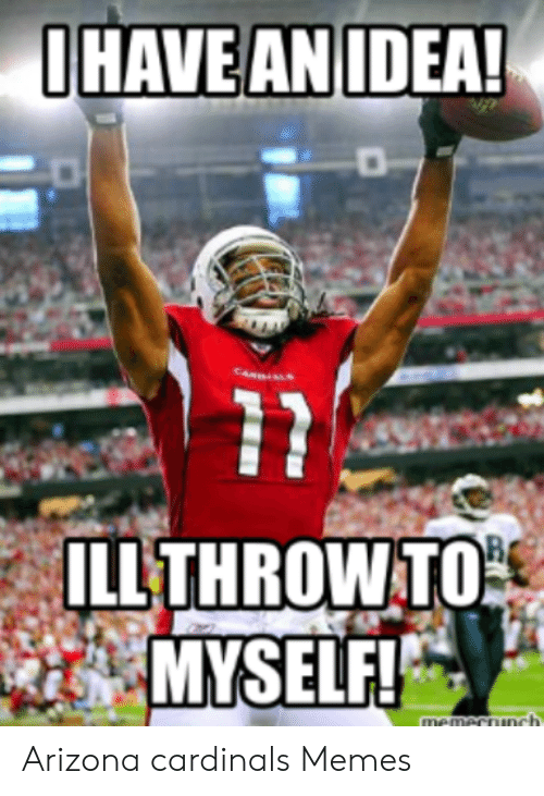 10 Best Arizona Cardinals Humor Images Arizona Cardinals