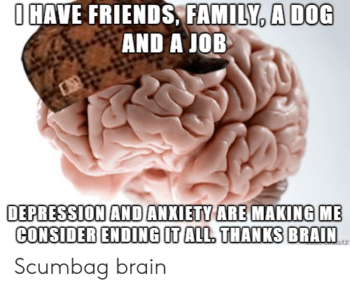 Family, Friends, and Anxiety: OHAVE FRIENDS, FAMILY, A DOG  AND A JOB  DEPRESSION AND ANXIETY ARE MAKING  CONSIDER ENDING IT ALL. THANKS BRAIN Scumbag brain