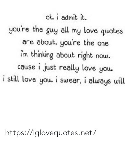 my love: ok. i admit it.  you're the guy  my love quotes  all  are about. you're the one  i'm thinking about right now.  cause i just really love you.  i still love you. i swear, i always will https://iglovequotes.net/