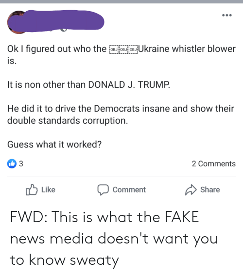 Fake, News, and Drive: Ok I figured out who the  Ukraine whistler blower  is.  It is non other than DONALD J. TRUMP  He did it to drive the Democrats insane and show their  double standards corruption.  Guess what it worked?  3  2 Comments  Like  Comment  Share FWD: This is what the FAKE news media doesn't want you to know sweaty