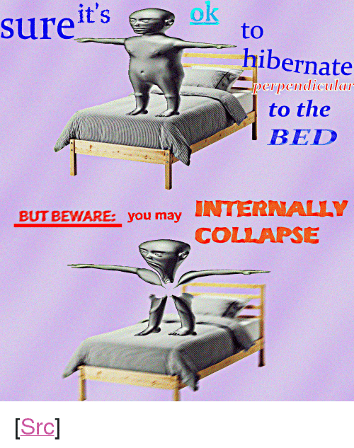 "Reddit, Com, and Src: ok  surets  to  ibernate  ID  to the  BED  perpendiculdli  INTERNALLY  BUT BEWARE youCOLLAPSE <p>[<a href=""https://www.reddit.com/r/surrealmemes/comments/7cr34d/happens_entirely_too_often/"">Src</a>]</p>"