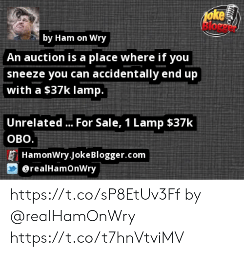 Memes, Blogger, and 🤖: oke  by Ham on Wry  An auction is a place where if you  sneeze you can accidentally end up  with a $37k lamp.  Unrelated.. For Sale, 1 Lamp $37k  оВо.  HamonWry Joke Blogger.com  @realHamOnWry https://t.co/sP8EtUv3Ff by @realHamOnWry https://t.co/t7hnVtviMV