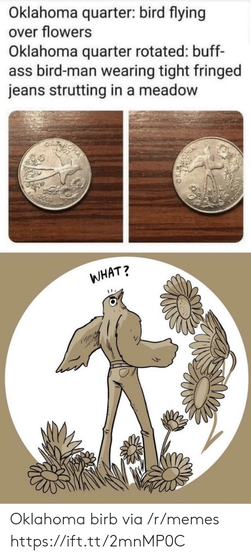 Memes, Flowers, and Oklahoma: Oklahoma quarter: bird flying  over flowers  Oklahoma quarter rotated: buff-  ass bird-man wearing tight fringed  jeans strutting in a meadow  2099  WHAT? Oklahoma birb via /r/memes https://ift.tt/2mnMP0C