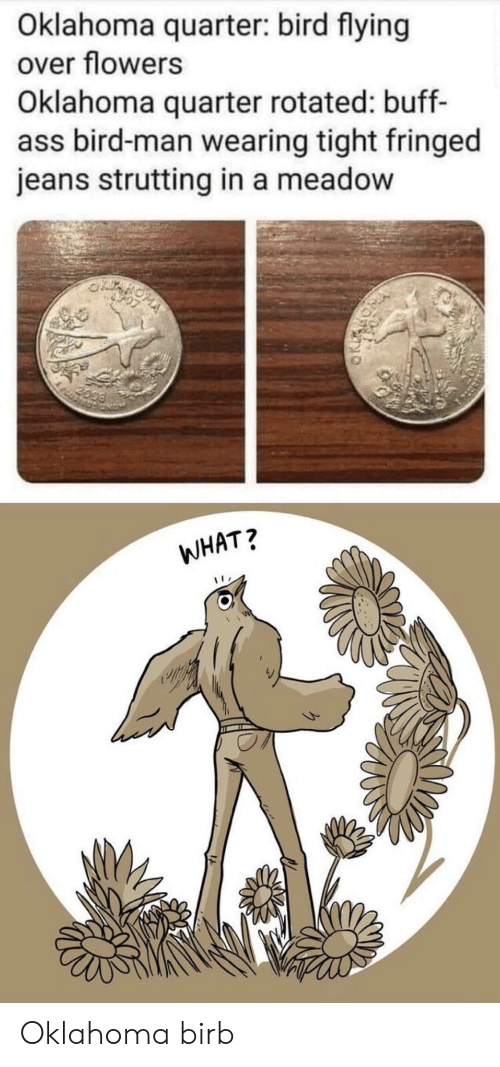 Oklahoma: Oklahoma quarter: bird flying  over flowers  Oklahoma quarter rotated: buff-  ass bird-man wearing tight fringed  jeans strutting in a meadow  2099  WHAT? Oklahoma birb