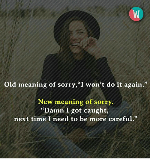 """Do It Again, Memes, and Sorry: Old meaning of sorry, """"I won't do it again.""""  New meaning of sorry.  Damn I got caught,  next time I need to be more careful.""""  93"""