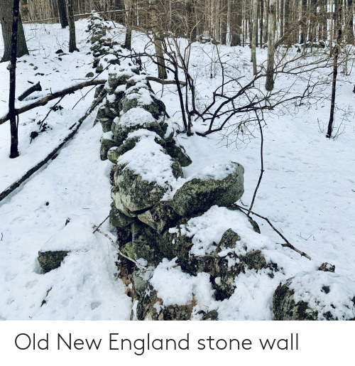 new england: Old New England stone wall