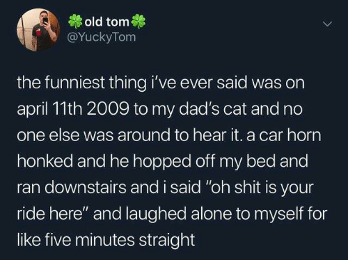 """Being Alone, Dank, and Shit: old tom  @YuckyTom  the funniest thing i've ever said was on  april 11th 2009 to my dad's cat and no  one else was around to hear it. a car horn  honked and he hopped off my bed and  ran downstairs and i said """"oh shit is your  ride here"""" and laughed alone to myself for  like five minutes straight"""