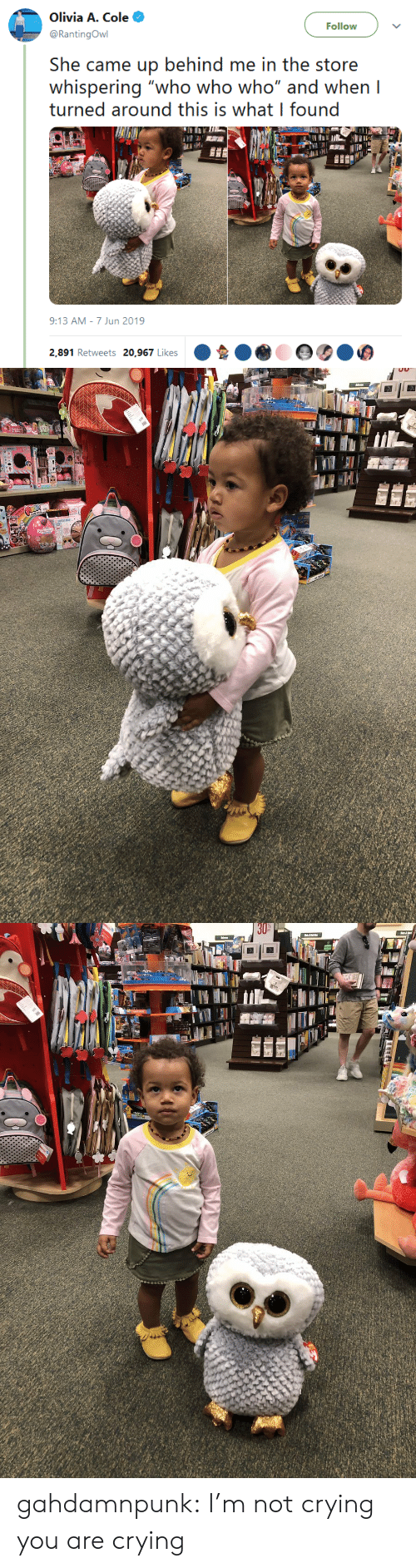 "Crying, Not Crying, and Target: Olivia A. Cole  Follow  @RantingOwl  She came up behind me in the store  whispering ""who who who"" and when I  turned around this is what I found  9:13 AM 7 Jun 2019  2,891 Retweets 20,967 Likes gahdamnpunk: I'm not crying you are crying"