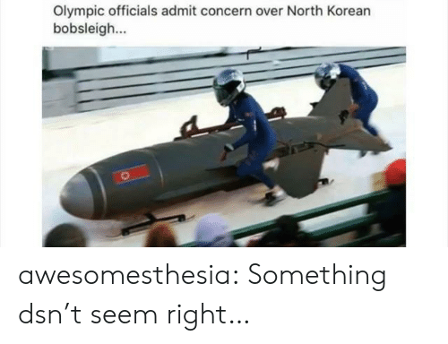 north korean: Olympic officials admit concern over North Korean  bobsleigh awesomesthesia:  Something dsn't seem right…