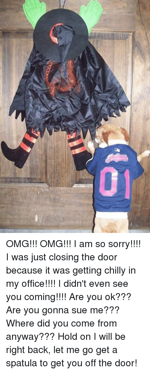 Did You Come From: OMG!!! OMG!!! I am so sorry!!!!  I was just closing the door because it was getting chilly in my office!!!! I didn't even see you coming!!!!  Are you ok??? Are you gonna sue me??? Where did you come from anyway???  Hold on I will be right back, let me go get a spatula to get you off the door!