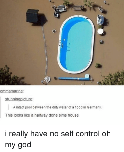 God, Ironic, and Oh My God: ommamarine  stunningpicture  A intact pool between the dirty water of a flood in Germany.  This looks like a halfway done sims house i really have no self control oh my god