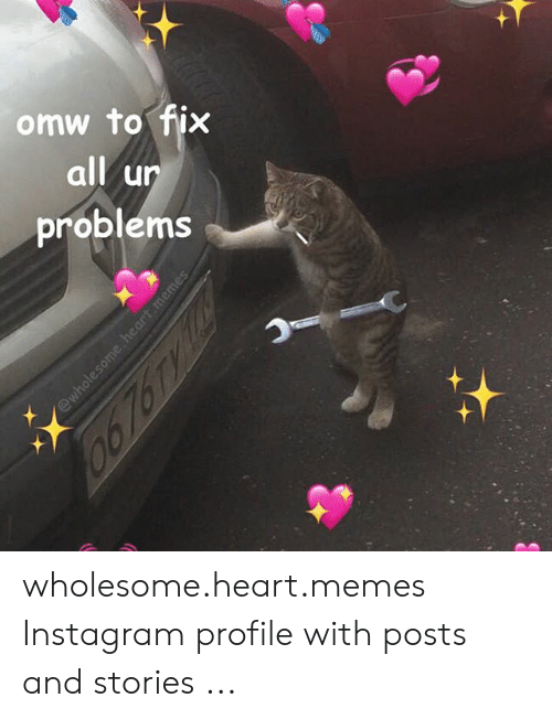 Wholesome Heart: omw to fix  all un  problems  汁 wholesome.heart.memes Instagram profile with posts and stories ...