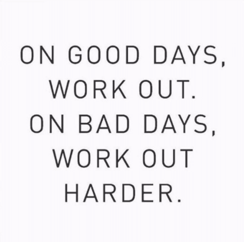 Bad, Work, and Good: ON GOOD DAYS,  WORK OUT.  ON BAD DAYS,  WORK OUT  HARDER