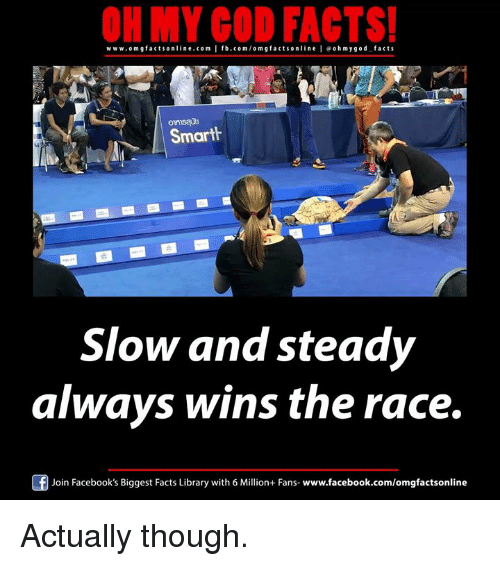 wins-the-race: ON MY GOD FACTS!  www.om facts online.com I fb.com/om g facts on  l e ohmygod facts  Smarth  Slow and steady  always wins the race.  Join Facebook's Biggest Facts Library with 6 Million+ Fans  www.facebook.com/omgfactsonline Actually though.