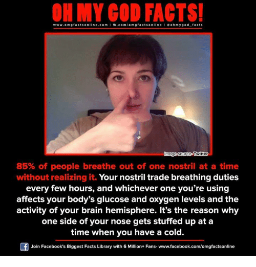 Brains, Memes, and Affect: ON MY GOD FACTS!  www.omg facts online.com  I fb.com/o m g facts online I ohm ygo d facts  mage Source  Twitter  85% of people breathe out of one nostril at a time  without realizing it.  Your nostril trade breathing duties  every few hours, and whichever one you're using  affects your body's glucose and oxygen levels and the  activity of your brain hemisphere. It's the reason why  one side of your nose gets stuffed up at a  time when you have a cold.  Join Facebook's Biggest Facts Library with 6 Million+ Fans- www.facebook.com/omgfactsonline