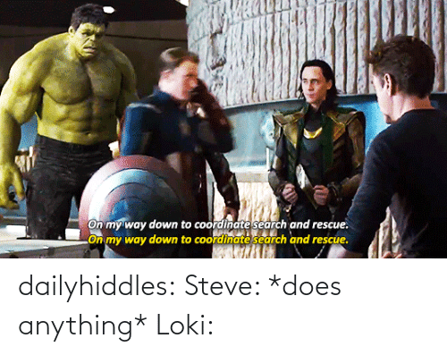 steve: On my way down to coordinate search and rescue.  LOn my way down to coordinate search and rescue. dailyhiddles:  Steve: *does anything* Loki: