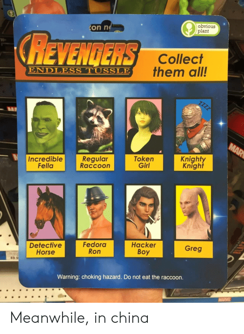 Fedora: on n  obvious  plant  REVENGERS  10  Collect  them all!  ENDLESS TUSSLE  Incredible  Fella  Regular  Raccoon  Token  Girl  Knight  Knight  Detective  Horse  Fedora  Ron  Hacker  Boy  Greg  49.9  Warning: choking hazard. Do not eat the raccoon. Meanwhile, in china