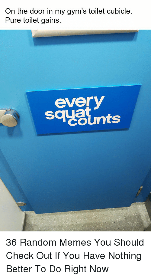 Squat: On the door in my gym's toilet cubicle  Pure toilet gains  sayslnts  everV  squat 36 Random Memes You Should Check Out If You Have Nothing Better To Do Right Now