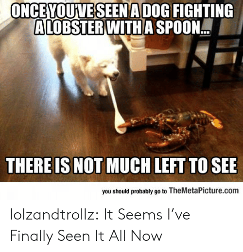 spoon: ONCEYOUVESEENADOG FIGHTING  ALOBSTER WITH A SPOON.  THERE IS NOT MUCH LEFT TO SEE  you should probably go to TheMetaPicture.com lolzandtrollz:  It Seems I've Finally Seen It All Now
