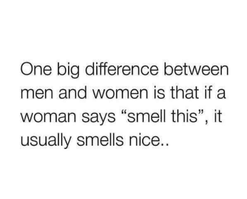 """Smell, Women, and Nice: One big difference between  men and women is that if a  woman says """"smell this"""", it  usually smells nice.."""