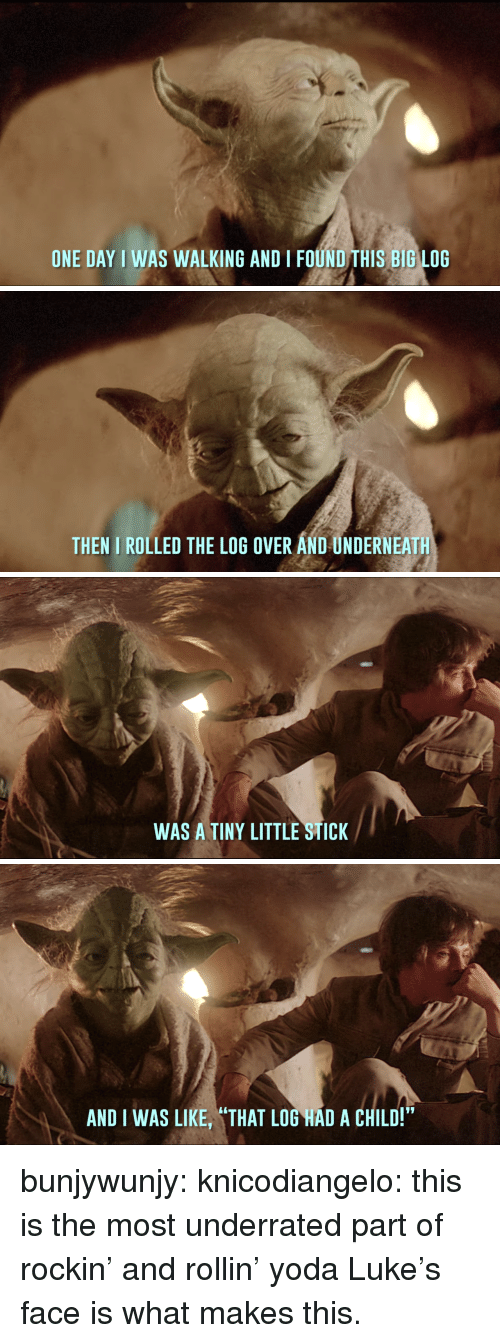 """Tumblr, Yoda, and Blog: ONE DAY I WAS WALKING AND I FOUND THIS BIG LOG   THEN I ROLLED THE LOG OVER AND UNDERNEATH   WAS A TINY LITTLE STICK   AND I WAS LIKE, """"THAT LOG HAD A CHILD!"""" bunjywunjy: knicodiangelo: this is the most underrated part of rockin' and rollin' yoda Luke's face is what makes this."""