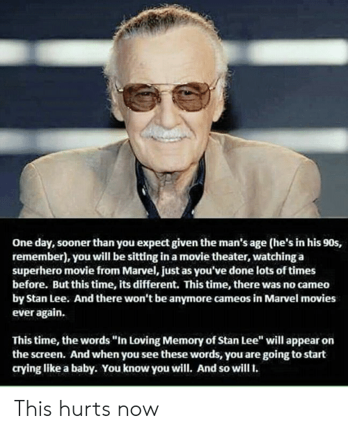 "cameo: One day, sooner than you expect given the man's age (he's in his 90s,  remember), you will be sitting in a movie theater, watching a  superhero movie from Marvel, just as you've done lots of times  before. But this time, its different. This time, there was no cameo  by Stan Lee. And there won't be anymore cameos in Marvel movies  ever again.  This time, the words ""In Loving Memory of Stan Lee"" will appear on  the screen. And when you see these words, you are going to start  crying like a baby. You know you will. And so will. This hurts now"