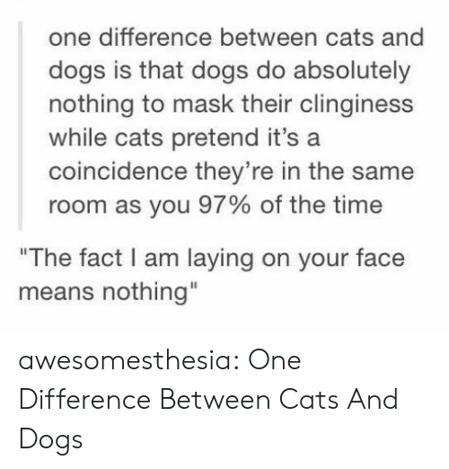 """Cats, Dogs, and Tumblr: one difference between cats and  dogs is that dogs do absolutely  nothing to mask their clinginess  while cats pretend it's a  coincidence they're in the same  room as you 97% of the time  """"The fact I am laying on your face  means nothing"""" awesomesthesia:  One Difference Between Cats And Dogs"""