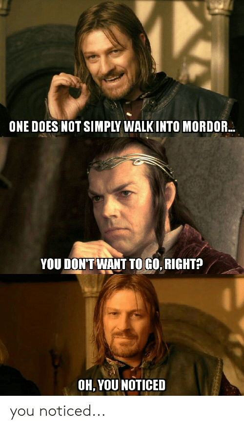 Lord of the Rings, One, and You: ONE DOES NOT SIMPLY WALK INTO MORDOR  YOU DON'T WANT TO GO, RIGHT?  OH, YOU NOTICED you noticed...