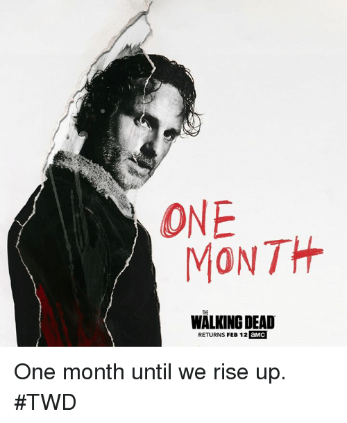 Walking Dead Returns: ONE  MONTH  THE  WALKING DEAD  RETURNS FEB 12 aMC One month until we rise up. #TWD