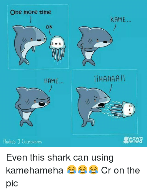 sharking: One more time  KAME.  Ok  HAME  iHAAAA!!  Andres J CoLMeNares  waw  wiwa Even this shark can using kamehameha 😂😂😂 Cr on the pic