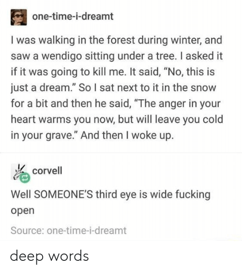 """open source: one-time-i-dreamt  I was walking in the forest during winter, and  saw a wendigo sitting under a tree. I asked it  if it was going to kill me. It said, """"No, this is  just a dream."""" So I sat next to it in the snow  for a bit and then he said, """"The anger in your  heart warms you now, but will leave you cold  in your grave."""" And then I woke up.  corvell  Well SOMEONE'S third eye is wide fucking  open  Source: one-time-i-dreamt deep words"""