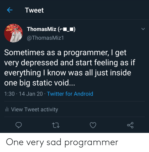 one: One very sad programmer