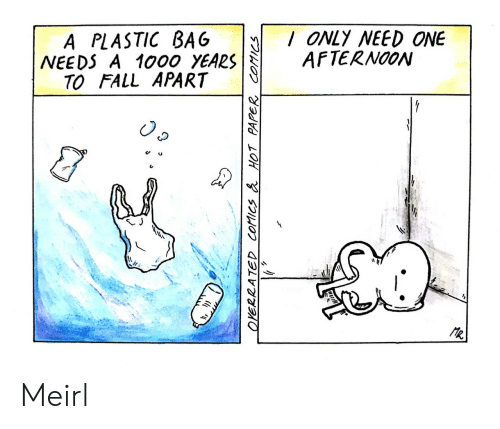 Fall, MeIRL, and Comics: /ONLY NEED ONE  AFTERNOON  BAG  A PLASTIC  NEEDS A 1000 YEARS  TO FALL APART  R  2ATED COtics & HOT PAPER COMICS  w Meirl