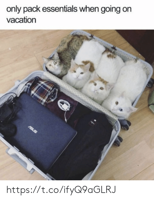 On Vacation: only pack essentials when going on  vacation  rsus https://t.co/ifyQ9aGLRJ