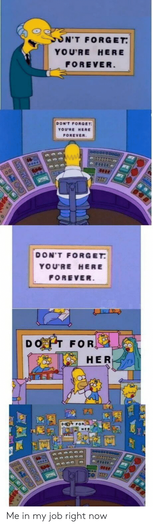 Forever, Her, and Job: ON'T FORGET  YOU'RE HERE  FOREVER  DON'T FORGET  YOU'RE HERE  FOREVER.  DON'T FORGET  YOU'RE HERE  FOREVER.  DOT FOR,  HER  DO FOR Me in my job right now