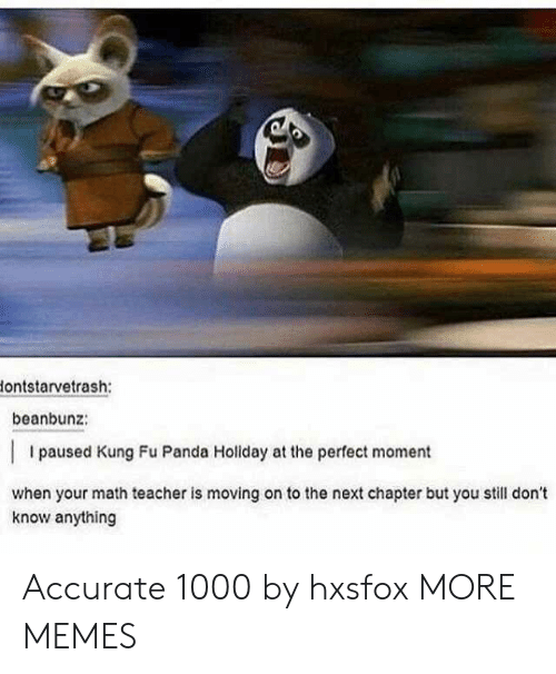 kung fu: ontstarvetrash:  beanbunz:  I paused Kung Fu Panda Holiday at the perfect moment  when your math teacher is moving on to the next chapter but you still don't  know anything Accurate 1000 by hxsfox MORE MEMES
