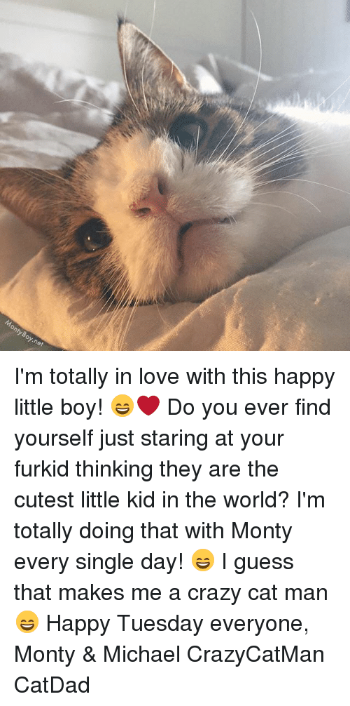 Crazy, Love, and Memes: onty oy.net I'm totally in love with this happy little boy! 😄❤️ Do you ever find yourself just staring at your furkid thinking they are the cutest little kid in the world? I'm totally doing that with Monty every single day! 😄 I guess that makes me a crazy cat man 😄 Happy Tuesday everyone, Monty & Michael CrazyCatMan CatDad