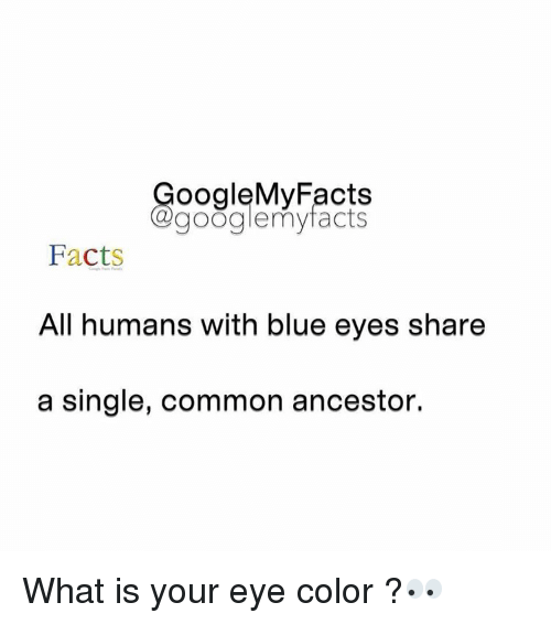 Googłe: oogleMy Facts  google my facts  Facts  All humans with blue eyes share  a single, common ancestor. What is your eye color ?👀