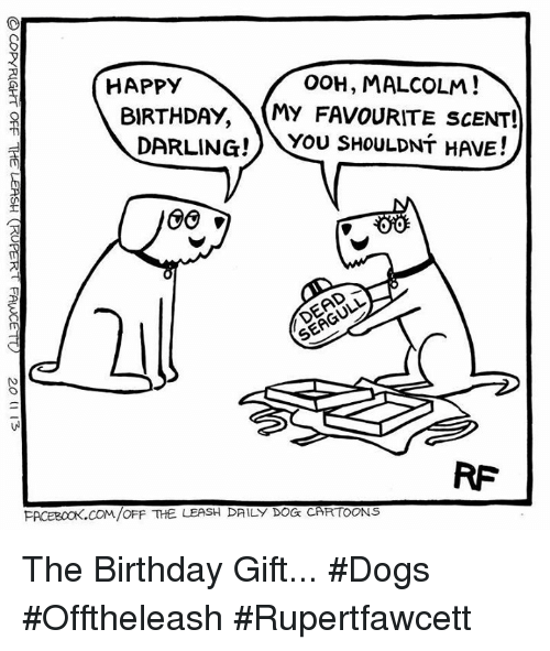 Ooh Malcolm Happy Birthday My Favourite Scent Darling Mou Shouldnt Have Oro Facebookcomoff The Leash Daily Dog Cartoons The Birthday Gift Dogs Offtheleash Rupertfawcett Meme On Esmemes Com