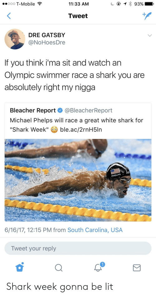 "Michael Phelps: ooo T-Mobile  11:33 AM  Tweet  DRE GATSBY  @NoHoesDre  If you think i'ma sit and watch an  Olympic swimmer race a shark you are  absolutely right my nigga  Bleacher Report @BleacherReport  Michael Phelps will race a great white shark for  ""Shark Week"" ble.ac/2rnH5ln  PHELPS  6/16/17, 12:15 PM from South Carolina, USA  Tweet your reply Shark week gonna be lit"