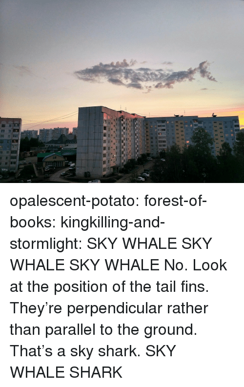 Books, Target, and Tumblr: opalescent-potato: forest-of-books:   kingkilling-and-stormlight: SKY WHALE SKY WHALE SKY WHALE  No. Look at the position of the tail fins. They're perpendicular rather than parallel to the ground. That's a sky shark.   SKY WHALE SHARK
