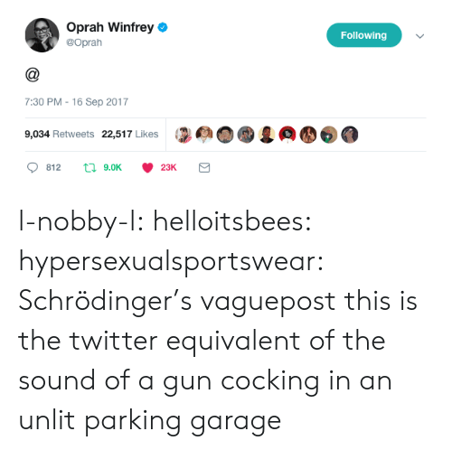 Gif, Oprah Winfrey, and Target: Oprah Winfrey  @Oprah  Following  7:30 PM - 16 Sep 2017  9,034 Retweets 22,517 Likes l-nobby-l:  helloitsbees:  hypersexualsportswear:   Schrödinger's vaguepost    this is the twitter equivalent of the sound of a gun cocking in an unlit parking garage