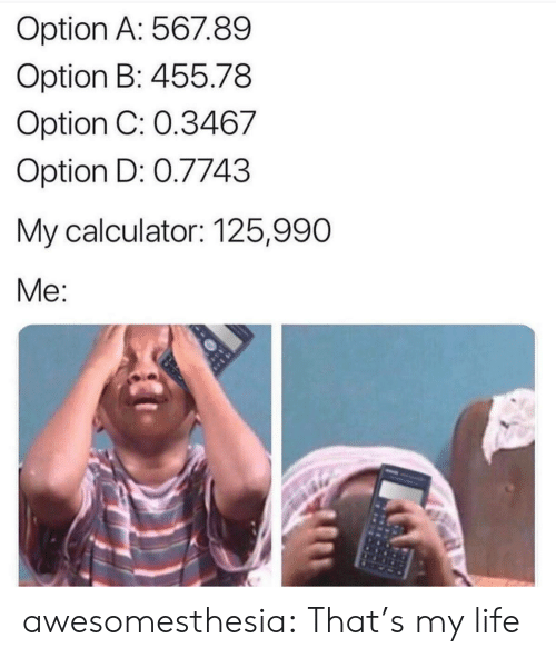 Calculator: Option A: 567.89  Option B: 455.78  Option C: 0.3467  Option D: 0.7743  My calculator: 125,990  Me: awesomesthesia:  That's my life