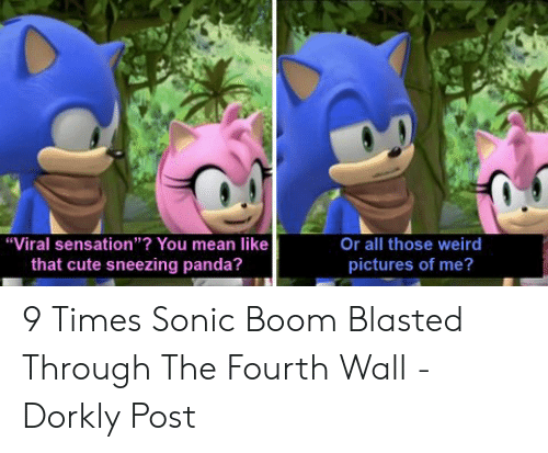 """Cute, Weird, and Panda: Or all those weird  pictures of me?  """"Viral sensation""""? You mean like  that cute sneezing panda? 9 Times Sonic Boom Blasted Through The Fourth Wall - Dorkly Post"""