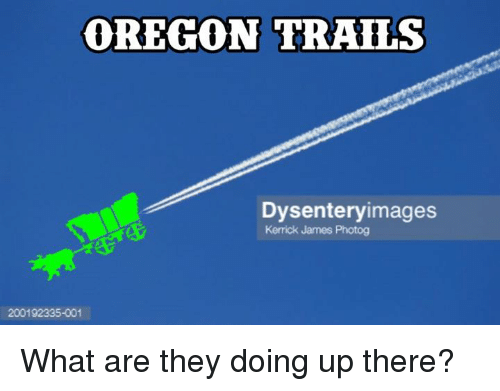 oregon trails dysentery images kerrick james photog what are they