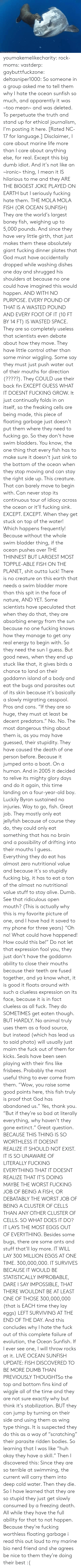 "useful: ORihad Herrma M  S youmakemelikecharity:  rock-moms:  vastderp:  gaybuttfuckzone:  deltasniper1000:  So someone in a group asked me to tell them why I hate the ocean sunfish so much, and apparently it was ~too mean~ and was deleted. To perpetuate the truth and stand up for ethical journalism, I'm posting it here. [Rated NC-17 for language.]  Disclaimer, I care about marine life more than I care about anything else, for real. Except this big dumb idiot. And it's not like an ~ironic~ thing, I mean it IS hilarious to me and they ARE THE BIGGEST JOKE PLAYED ON EARTH but I seriously fucking hate them.  THE MOLA MOLA FISH (OR OCEAN SUNFISH)  They are the world's largest boney fish, weighing up to 5,000 pounds. And since they have very little girth, that just makes them these absolutely giant fucking dinner plates that God must have accidentally dropped while washing dishes one day and shrugged his shoulders at because no one could have imagined this would happen. AND WITH NO PURPOSE. EVERY POUND OF THAT IS A WASTED POUND AND EVERY FOOT OF IT (10 FT BY 14 FT) IS WASTED SPACE.  They are so completely useless that scientists even debate about how they move. They have little control other than some minor wiggling. Some say they must just push water out of their mouths for direction (?????). They COULD use their back fin EXCEPT GUESS WHAT IT DOESNT FUCKING GROW. It just continually folds in on itself, so the freaking cells are being made, this piece of floating garbage just doesn't put them where they need to fucking go.   So they don't have swim bladders. You know, the one thing that every fish has to make sure it doesn't just sink to the bottom of the ocean when they stop moving and can stay the right side up. This creature. That can barely move to begin with. Can never stop its continuous tour of idiocy across the ocean or it'll fucking sink. EXCEPT. EXCEPT. When they get stuck on top of the water! Which happens frequently! Because without the whole swim bladder thing, if the ocean pushes over THE THINNEST BUT LARGEST MOST TOPPLE-ABLE FISH ON THE PLANET, shit outta luck! There is no creature on this earth that needs a swim bladder more than this spit in the face of nature, AND YET. Some scientists have speculated that when they do that, they are absorbing energy from the sun because no one fucking knows how they manage to get any real energy to begin with. So they need the sun I guess. But good news, when they end up stuck like that, it gives birds a chance to land on their goddamn island of a body and eat the bugs and parasites out of its skin because it's basically a slowly migrating cesspool. Pros and cons.   ""If they are so huge, they must at least be decent predators."" No. No. The most dangerous thing about them is, as you may have guessed, their stupidity. They have caused the death of one person before. Because it jumped onto a boat. On a human. And in 2005 it decided to relive its mighty glory days and do it again, this time landing on a four-year-old boy. Luckily Byron sustained no injuries. Way to go, fish. Great job.  They mostly only eat jellyfish because of course they do, they could only eat something that has no brain and a possibility of drifting into their mouths I guess. Everything they do eat has almost zero nutritional value and because it's so stupidly fucking big, it has to eat a ton of the almost no nutritional value stuff to stay alive. Dumb. See that ridiculous open mouth? (This is actually why this is my favorite picture of one, and I have had it saved to my phone for three years) ""Oh no! What could have happened! How could this be!"" Do not let that expression fool you, they just don't have the goddamn ability to close their mouths because their teeth are fused together, and ya know what, it is good it floats around with such a clueless expression on its face, because it is in fact clueless as all fuck.  They do SOMETIMES get eaten though. BUT HARDLY. No animal truly uses them as a food source, but instead (which has lead us to said photo) will usually just maim the fuck out of them for kicks. Seals have been seen playing with their fins like frisbees. Probably the most useful thing to ever come from them.   ""Wow, you raise some good points here, this fish truly is proof that God has abandoned us."" Yes, thank you. ""But if they're so bad at literally everything, why haven't they gone extinct."" Great question.   BECAUSE THIS THING IS SO WORTHLESS IT DOESNT REALIZE IT SHOULD NOT EXIST. IT IS SO UNAWARE OF LITERALLY FUCKING EVERYTHING THAT IT DOESNT REALIZE THAT IT'S DOING MAYBE THE WORST FUCKING JOB OF BEING A FISH, OR DEBATABLY THE WORST JOB OF BEING A CLUSTER OF CELLS THAN ANY OTHER CLUSTER OF CELLS. SO WHAT DOES IT DO? IT LAYS THE MOST EGGS OUT OF EVERYTHING. Besides some bugs, there are some ants and stuff that'll lay more. IT WILL LAY 300 MILLION EGGS AT ONE TIME. 300,000,000. IT SURVIVES BECAUSE IT WOULD BE STATISTICALLY IMPROBABLE, DARE I SAY IMPOSSIBLE, THAT THERE WOULDNT BE AT LEAST ONE OF THOSE 300,000,000 (that is EACH time they lay eggs) LEFT SURVIVING AT THE END OF THE DAY.   And this concludes why I hate the fuck out of this complete failure of evolution, the Ocean Sunfish. If I ever see one, I will throw rocks at it.   LIVE OCEAN SUNFISH UPDATE: FISH DISCOVERED TO BE MORE DUMB THAN PREVIOUSLY THOUGHTSo  the top and bottom fins kind of wiggle all of the time and they are not  sure exactly why but think it's stabilization. BUT they can jump by  turning on their side and using them as  wing type things. It is suspected they do this as a way of ""scratching""  their parasite ridden bodies. So learning that I was like ""huh okay they  have a skill."" Then I discovered this: Since they  are so terrible at swimming, the current will carry them into deep cold  water. Then they die. So I have learned that they are so stupid they  just get slowly consumed by a freezing death. All while they have the  full ability for that to not happen. Because they're fucking worthless  floating garbage    i read this out loud to my marine bio nerd friend and she agrees   be nice to them they're doing their best :("